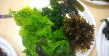 Les algues sont-elles toutes comestibles ?